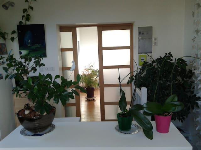 Appartement cocooning proche centre ville - Dijon - Leilighet