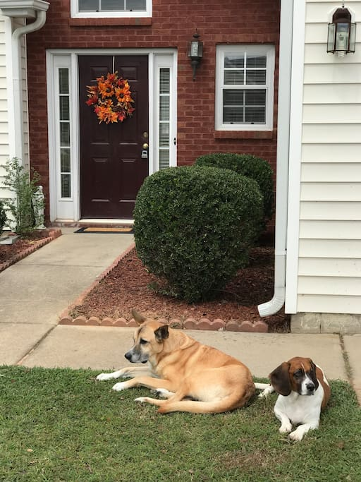 Once you see the wreath (changes with the season), you've arrived! Our dogs Cody and Bo might be out to greet you (: