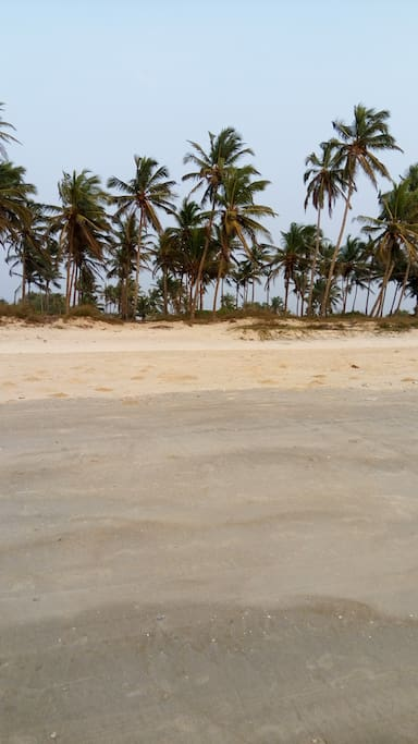 South Goa living