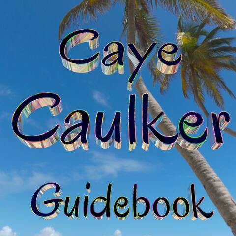 Mike's guidebook