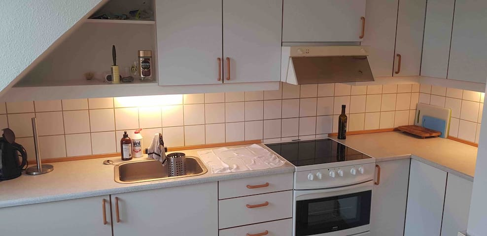 Big and nice apartment 700m from centrum
