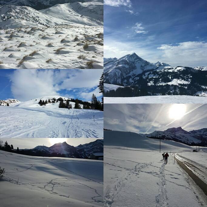 Cross skiing above Lauenen