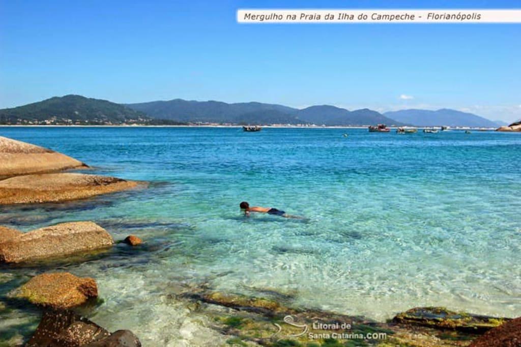 ilha do campeche,