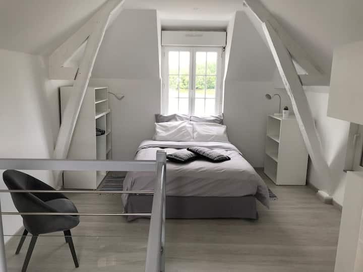 maison vue sur Loire MONTSOREAU + cour fermée