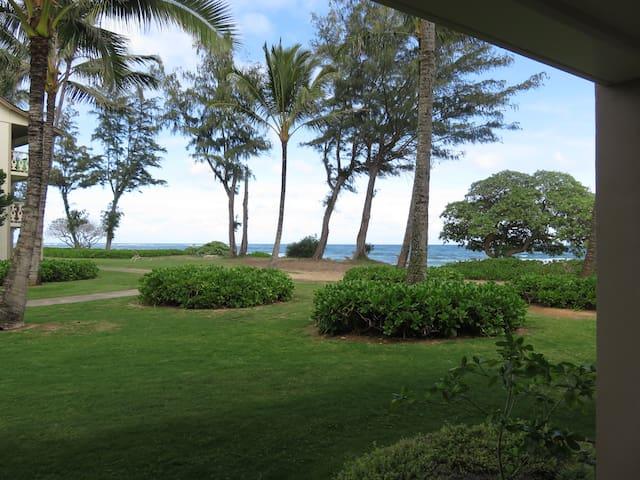 Kauai Oceanfront / View Condo #163