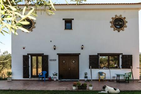 Casa Halcon Olive-Finca, 2 single beds