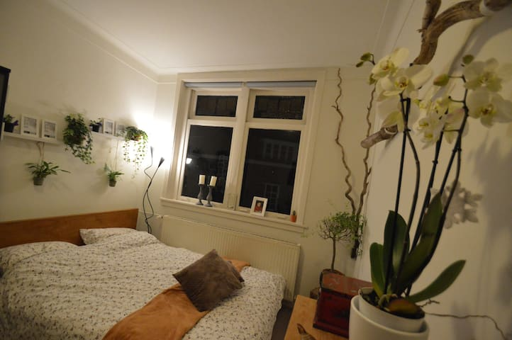 Perfect place to stay in the centre of Nijmegen. - Nijmegen - Townhouse