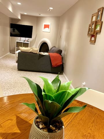 Bright & Cozy Refinished suite w/ fireplace!