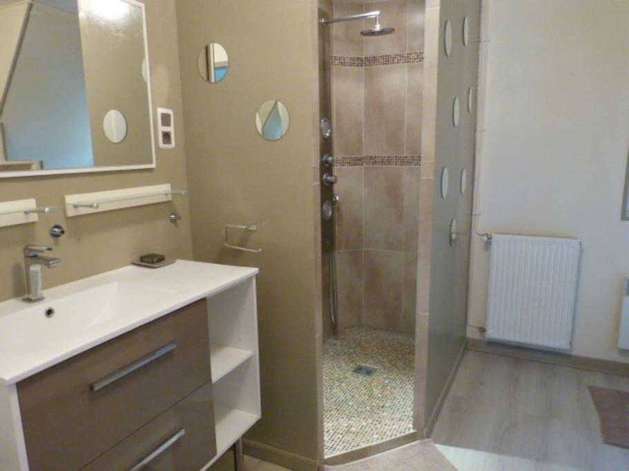la salle d'eau avec  wc, douche italienne