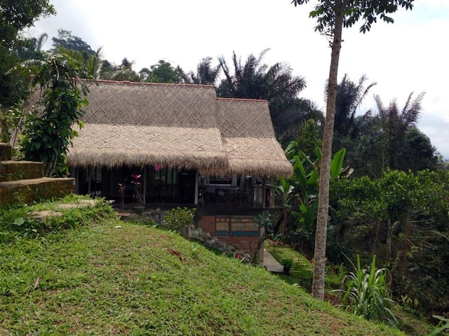 Mountain Cottage in the Coffee Farm - Penebel - Chatka