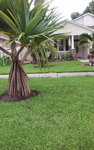 Beach Bungalow - Palm Harbor - Haus