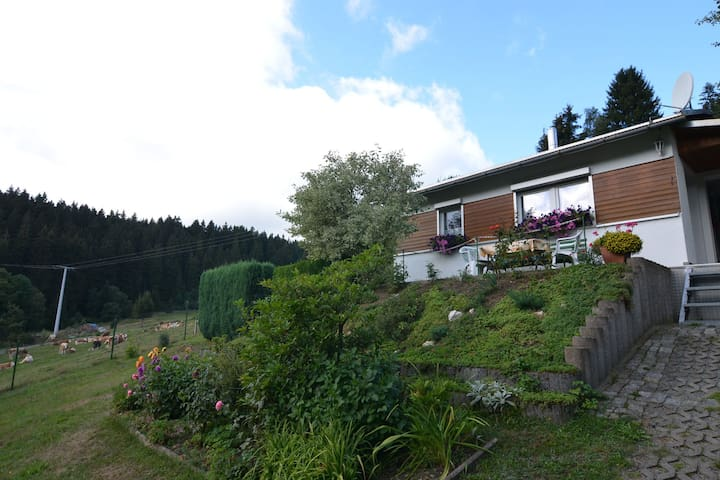 Detached holiday home in Thuringia with a terrific view from the balcony