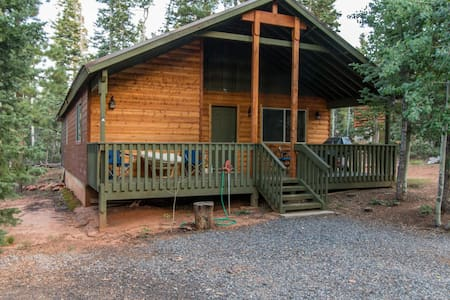 Ute Mountain Cabin - newly remodeled - sleeps 8 in beds
