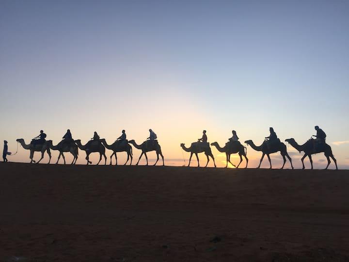 Desert luxury Camp, Camel treks; 125€ per pax