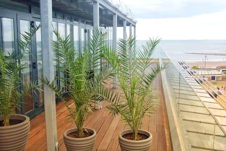 Penthouse 3 - Seafront & Shaldon Views