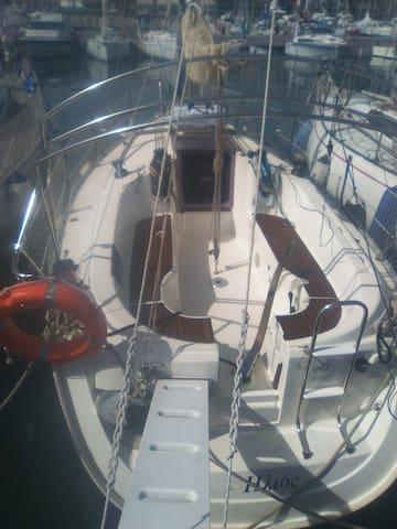 Barca in porto turistico protetto. - Imperia - Barco