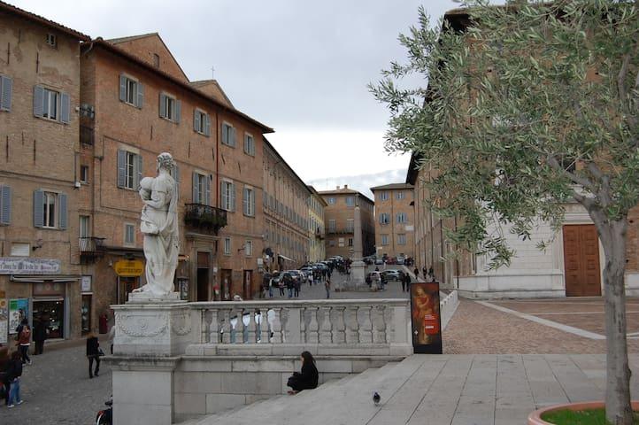 Domus Urbino - Pernottamento - Centro Storico - Urbino - Bed & Breakfast