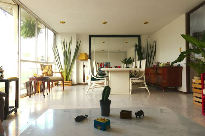 Chic Mexican Apartment in Roma Norte