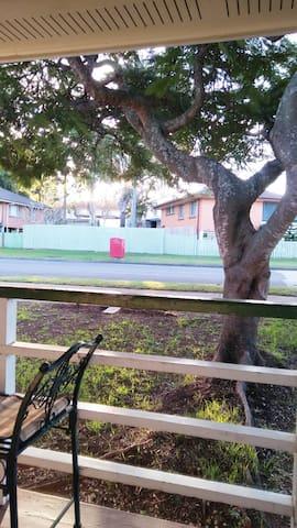 Lovely tree over the veranda.