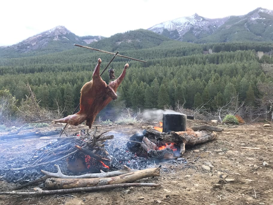 """Cordero Patagonico - Lamb from Patagonia """"asador"""" style. It goes great with local beer."""