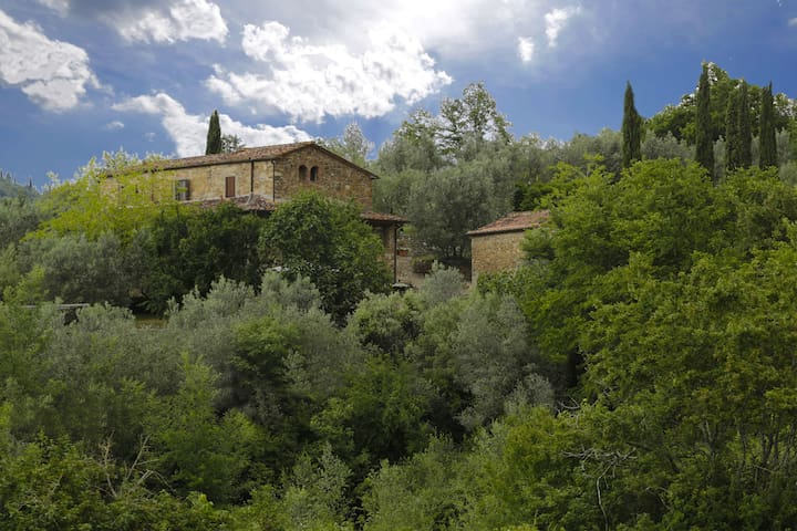 Le Logge - Green - Pergine Valdarno - Appartement