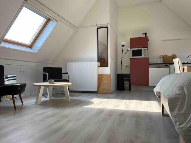 Nice spacious studio close to city centre