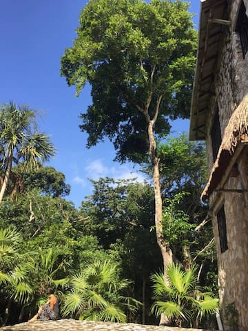 Private Mansion in Akumal Jungle - Akumal - Huis