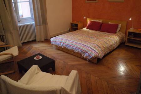 Du zen et des ailes - Lyon - Appartement
