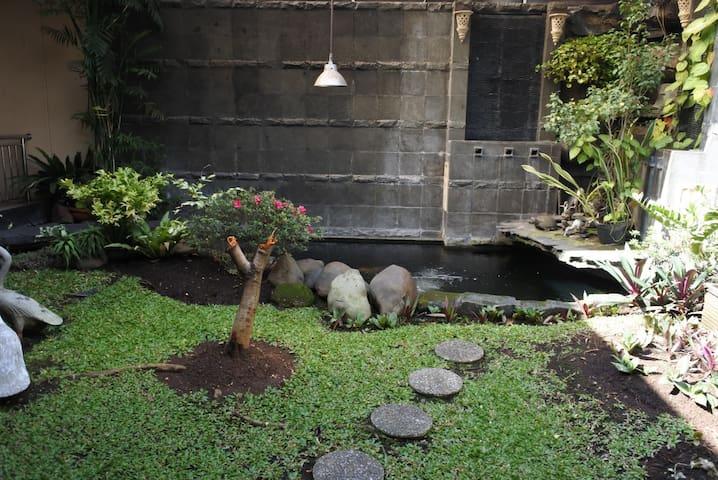 Taman belakang dan kolam ikan