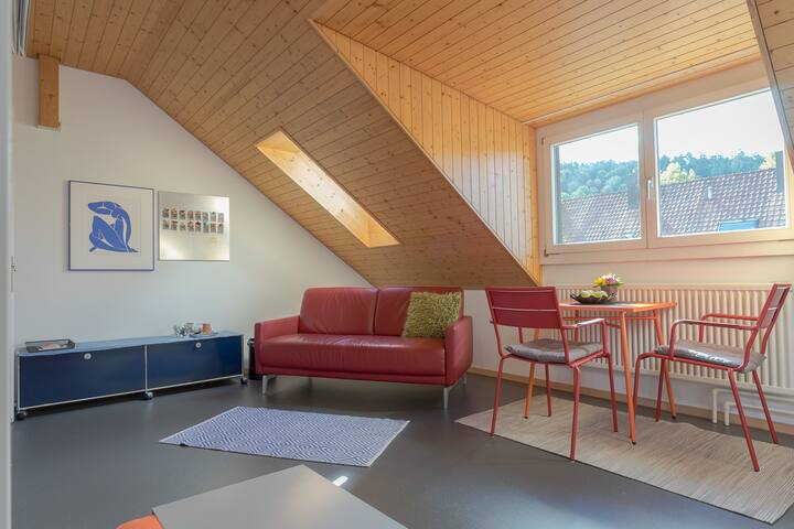 Dachzimmer in Reiheneinfamilienhaus mit Sitzplatz - Winterthur - House