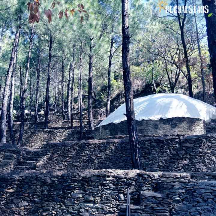 Bugyal Stays - Jungle Resort in Pauri 2 ppl