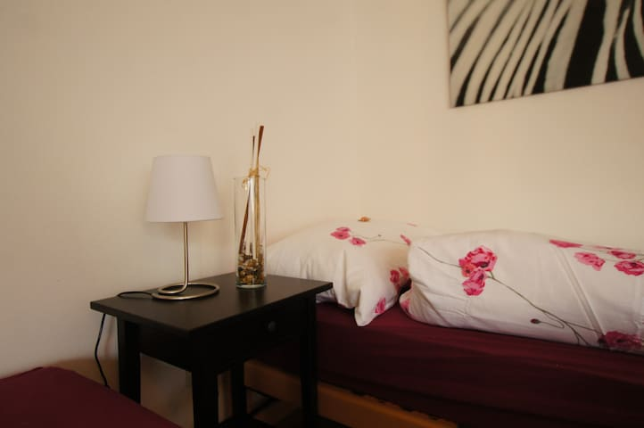 Charming studio in the city centre - Basel - Wohnung