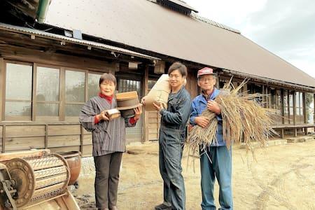 Mixed fun Dormitory 2 - GAMP HOUSE / Tadaaki