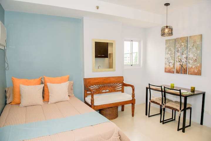 Beautifully furnished Studio Suite 4