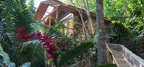 Private Treehouse Cabin Blanketed By Jungle