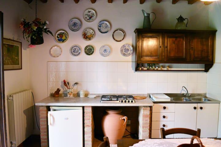 Appartamento Ciclamino - Montescudaio - Apartamento