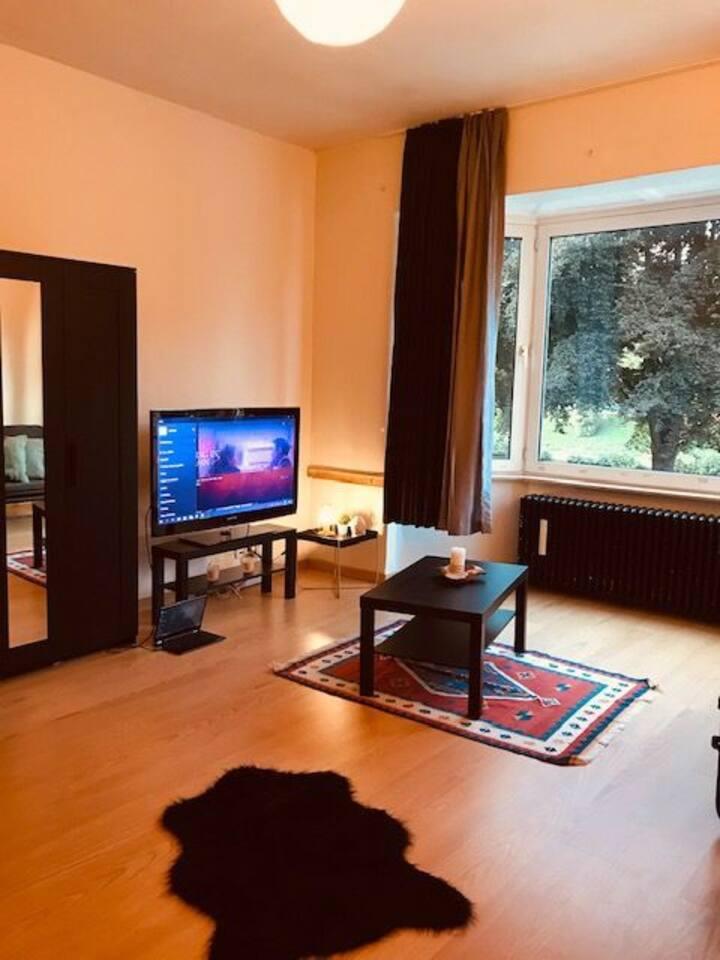 Toujours dans la chambre 2 qui est aussi le salon, vous avez à votre disposition une Tv, un ordinateur portable et Netflix. Merci d'utiliser le compte Airbnb et non le mien -_-