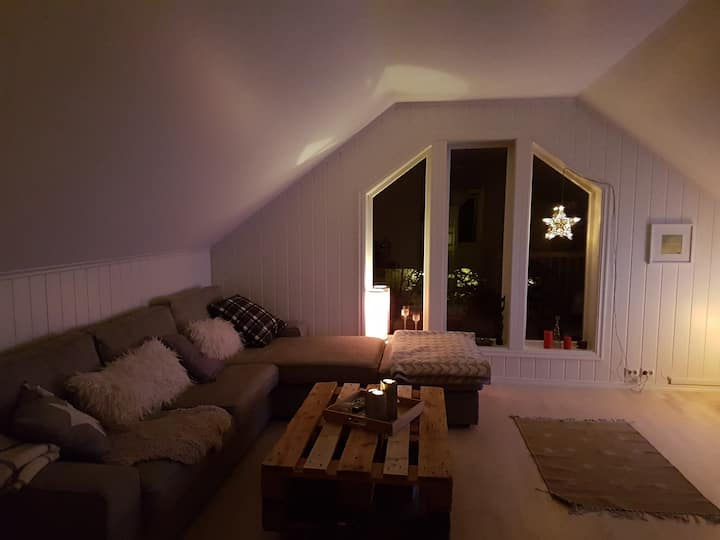 New, modern apartment in the middle of Lofoten