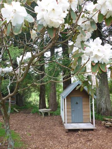 ★Teeny Tiny Tui - located in parklike garden
