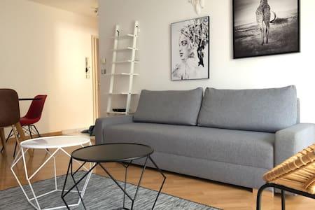 Confortable Apartment (MULHOUSE / BASEL / COLMAR)