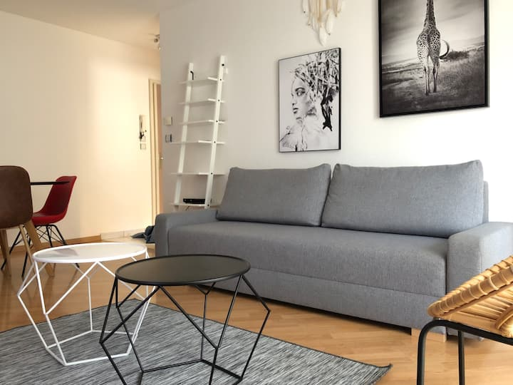 Confortable Apartment (MULHOUSE / BASEL / COLMAR)