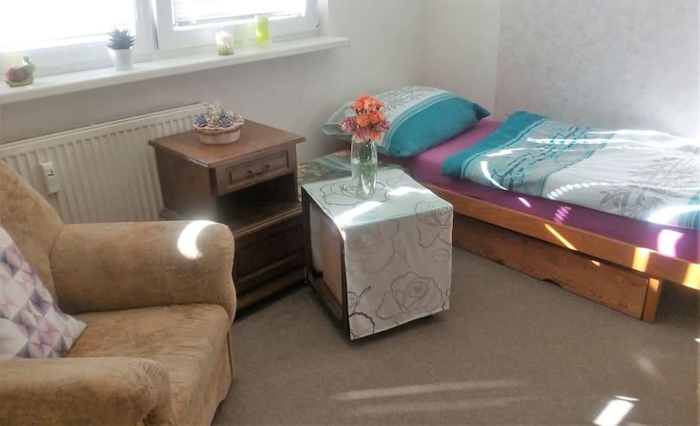 Own room - in apartment block near of the centre - Česká Lípa - Leilighet