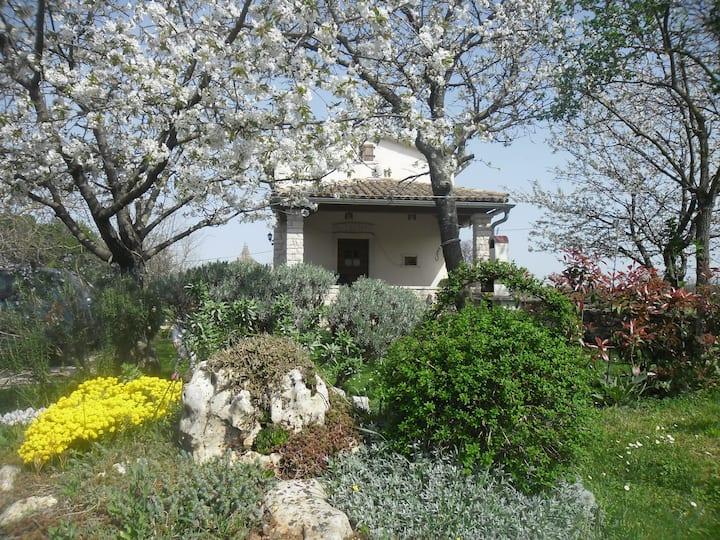 House Galant Istria