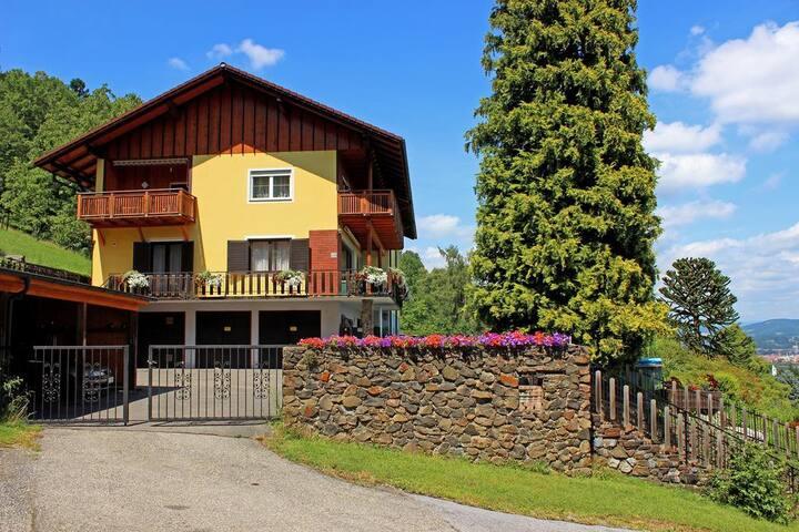 Ferienwohnung Wenzel 200 m2 apartme