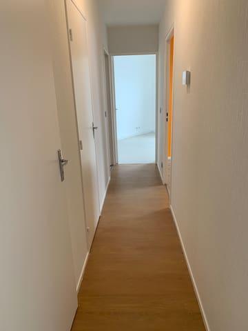 Appartement T3 entier