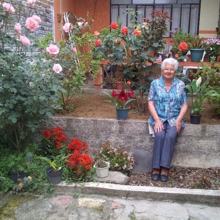 Bed & breakfast El hostal de las Flores