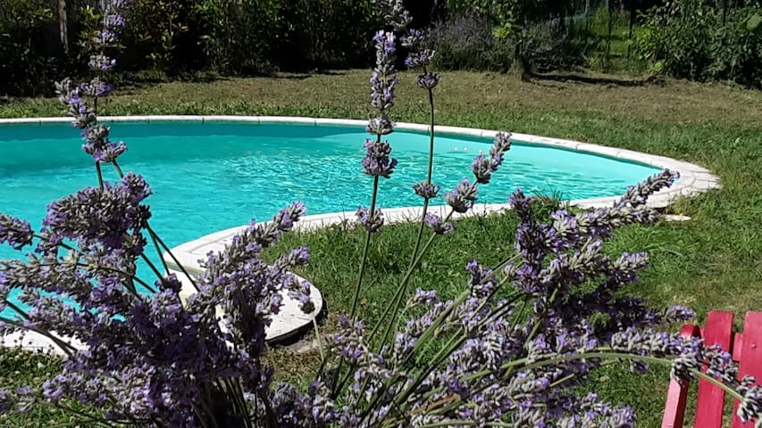 Maison avec piscine  - House with swimming pool - Sainte-Terre - Casa