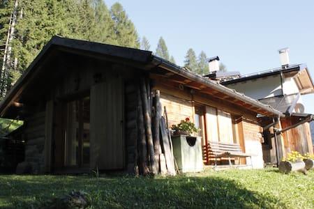 LA VOCE DEL BOSCO Selva di Cadore - Selva di Cadore - スイス式シャレー