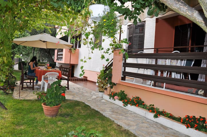 Apartment TIM (20391-A3) - Sv. Petar - Apartmen