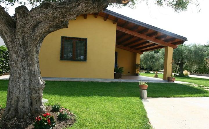 Guest House L'Antico Vigneto